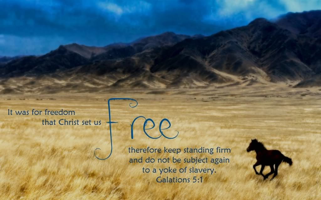 Image result for he who the son sets free kjv